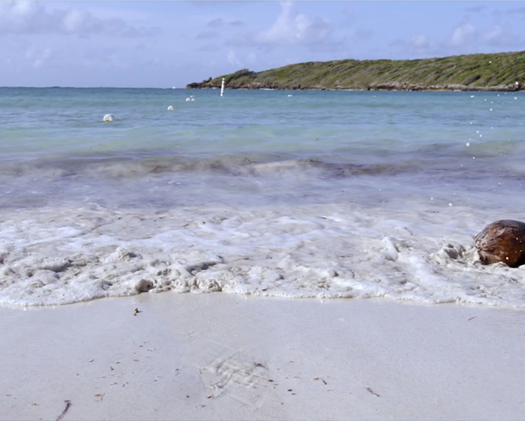W Vieques – Insider